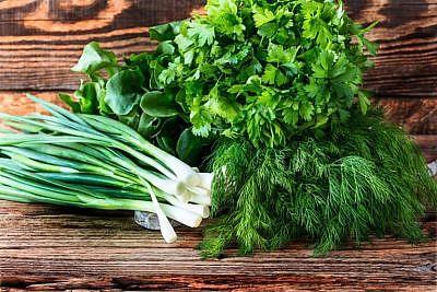 kak-hranit-zelen-1